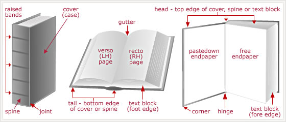 Parts of a book signed first editions mse books diagram of the different parts of a book ccuart Image collections