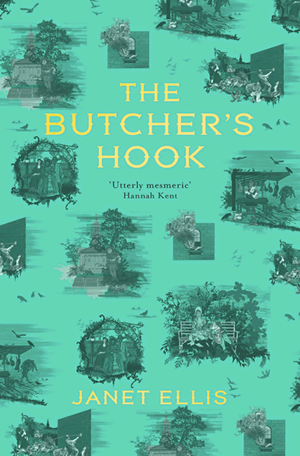 The Butcher's Hook - Janet Ellis
