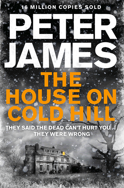 The House on Cold Hill - Peter James