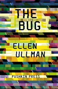 The Bug by Ellen Ullman